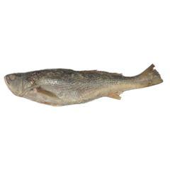 Pescada Inteira 400/600